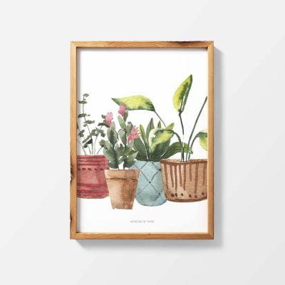 Lámina Pépinière - Ilustración Plantas