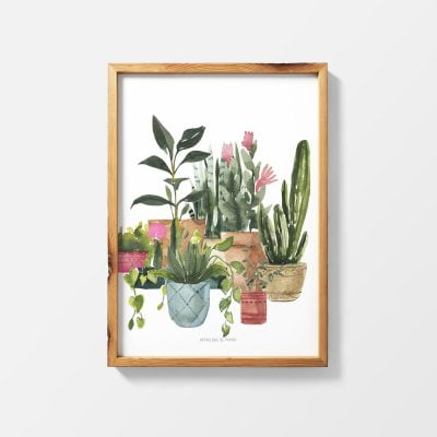 Lámina Botanical - Ilustración Plantas